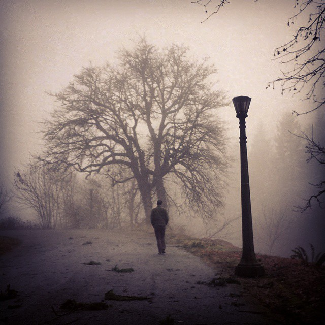 David on a foggy walk